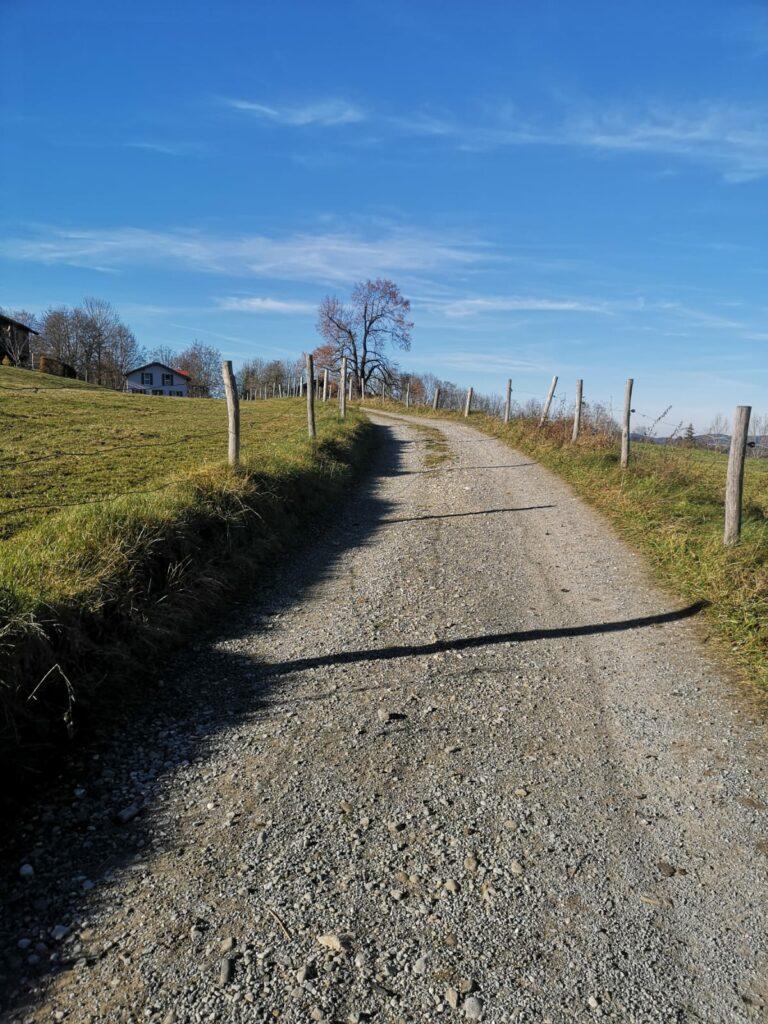"""Weg in Richtung """"Guggenberg Alm"""" in Bad Kohlgrub"""