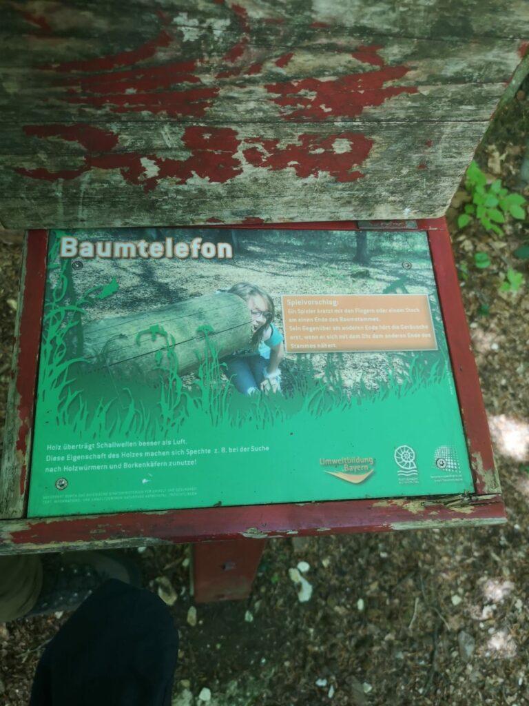 Natur-Erlebnis-Pfad in Treuchtlingen – Baumtelefon