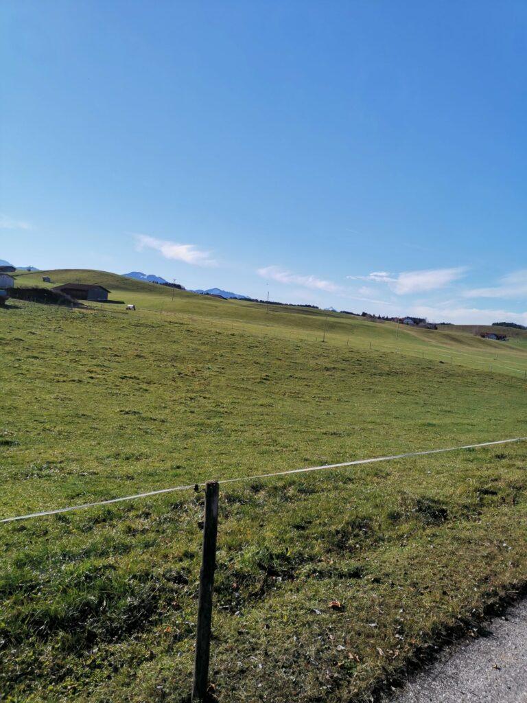 Felder und Wiesen rund um Lengenwang