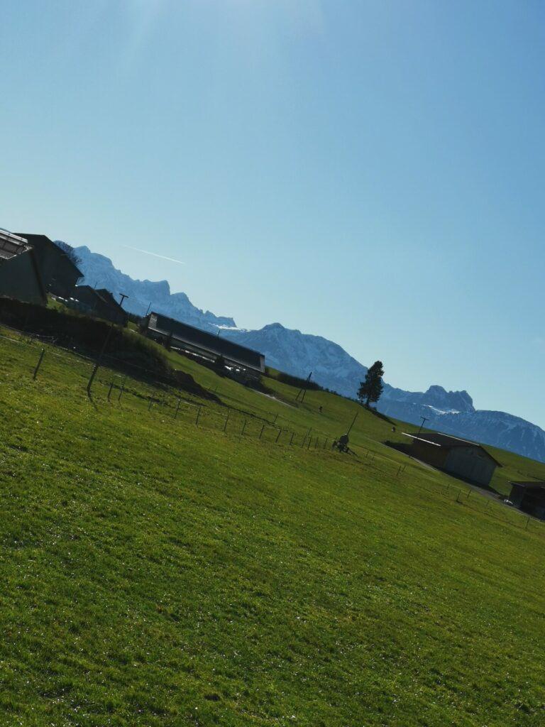 Mühlenweg in Lengenwang Blick Richtung Allgäuer Alpen (3)