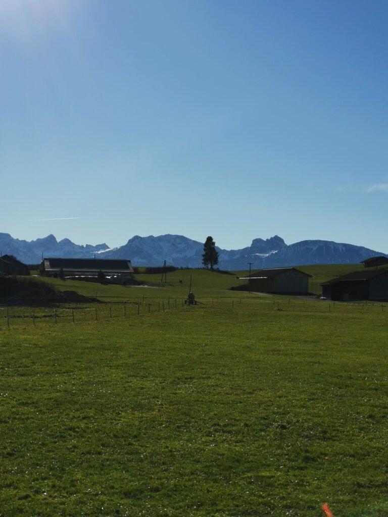 Mühlenweg in Lengenwang Blick Richtung Allgäuer Alpen (2)