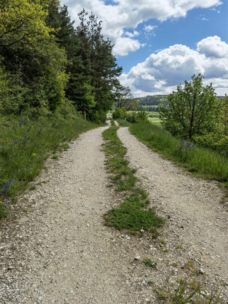 Natur-Erlebnis-Pfad (4) in Treuchtlingen