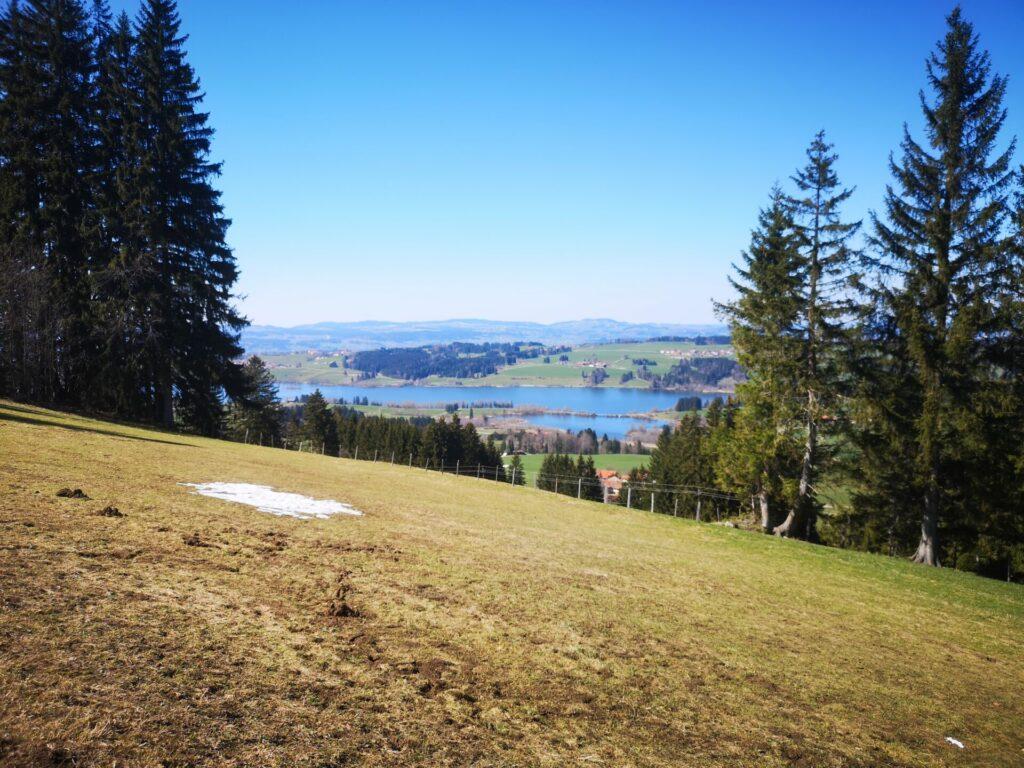 Ausblick vom Panoramaweg in Richtung Rottachspeicher