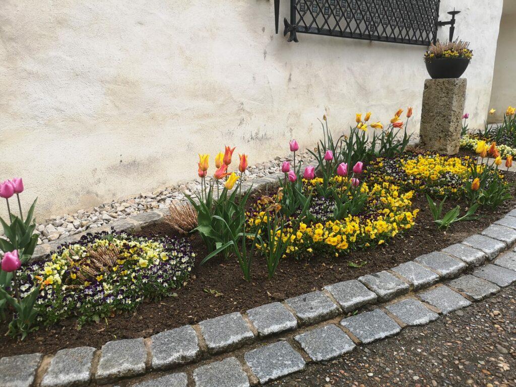 Blumenbeet Nördlinger Stadtmauer