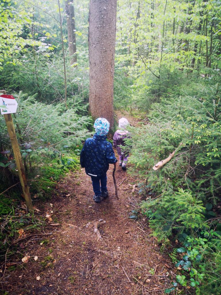 Geheimweg beim Walderlebnispfad Hauser-Wald (Neusäß-Hainhofen)