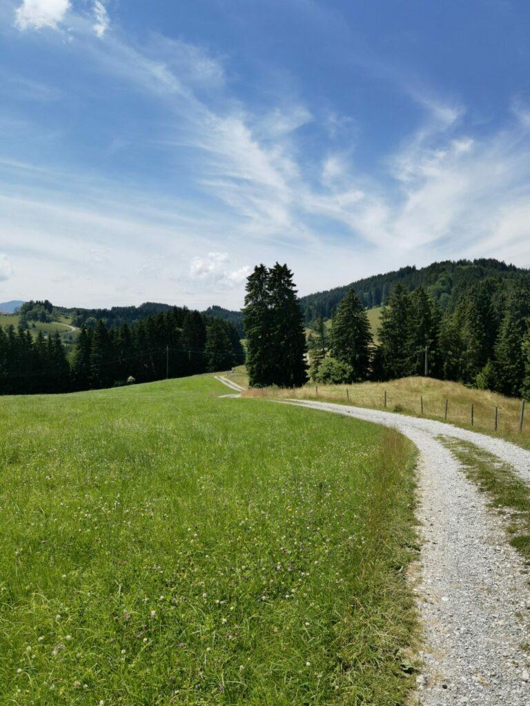 Durch die Wiesen - Drachenweg bei Roßhaupten