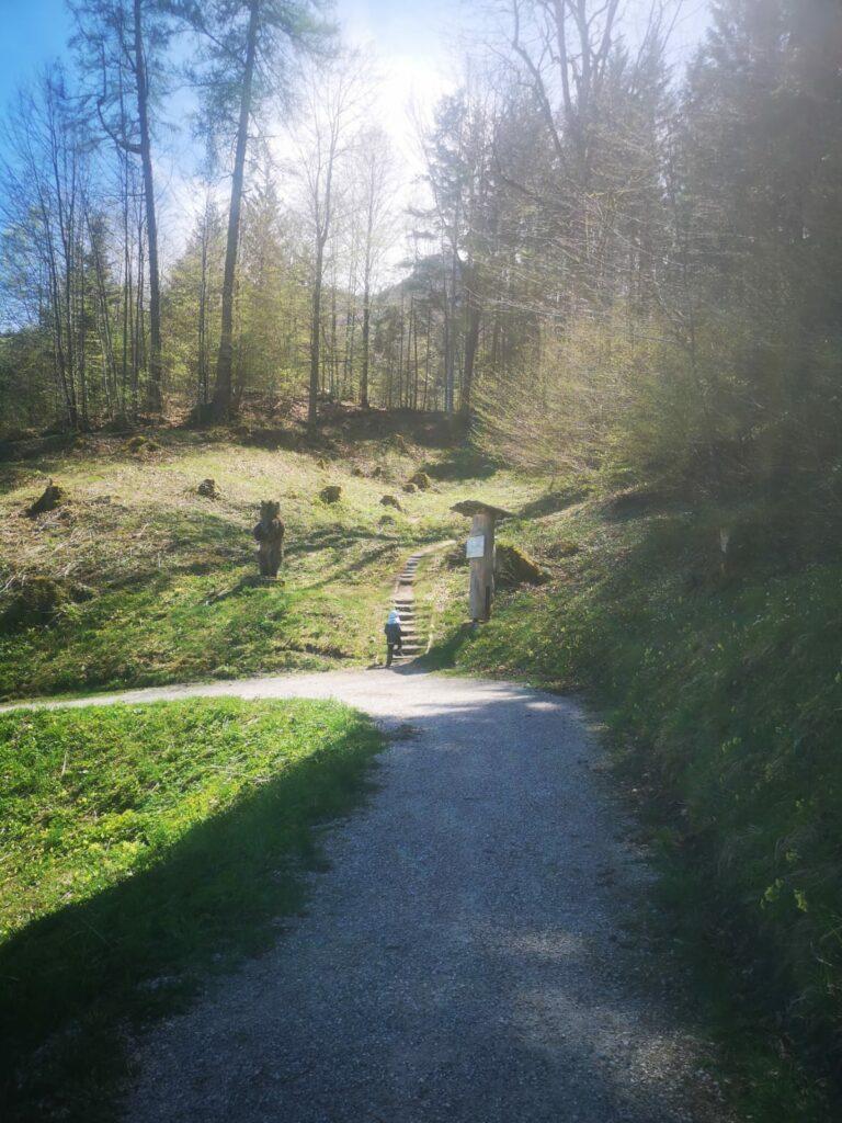 Erlebnispfad Grainau - Sagenhafter Bergwald