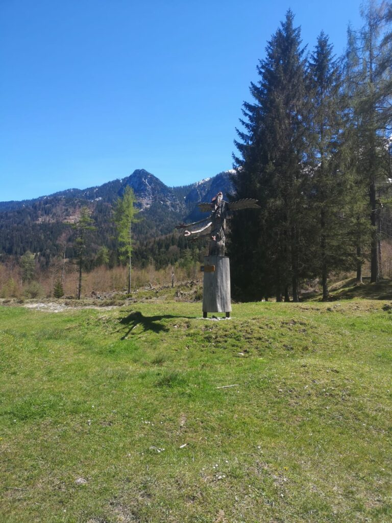 Sagenhafter Bergwald (Grainau)