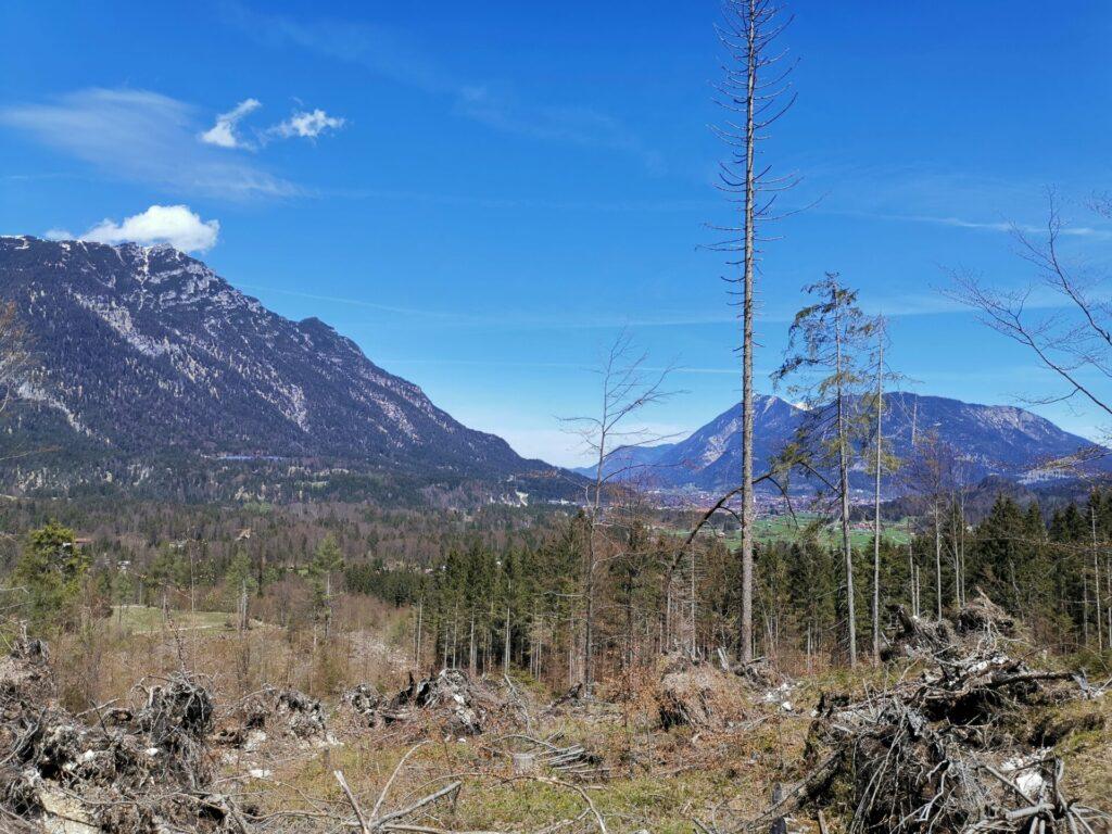 Erlebnispfad - Sagenhafter Bergwald von Grainau
