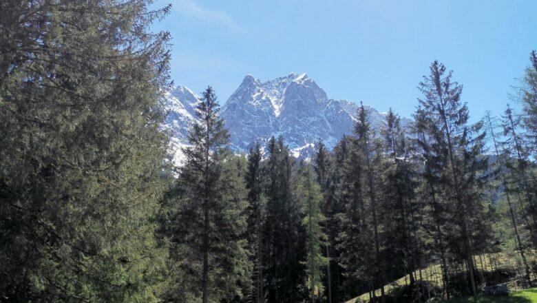 Grainau – Sagenhafter Bergwald