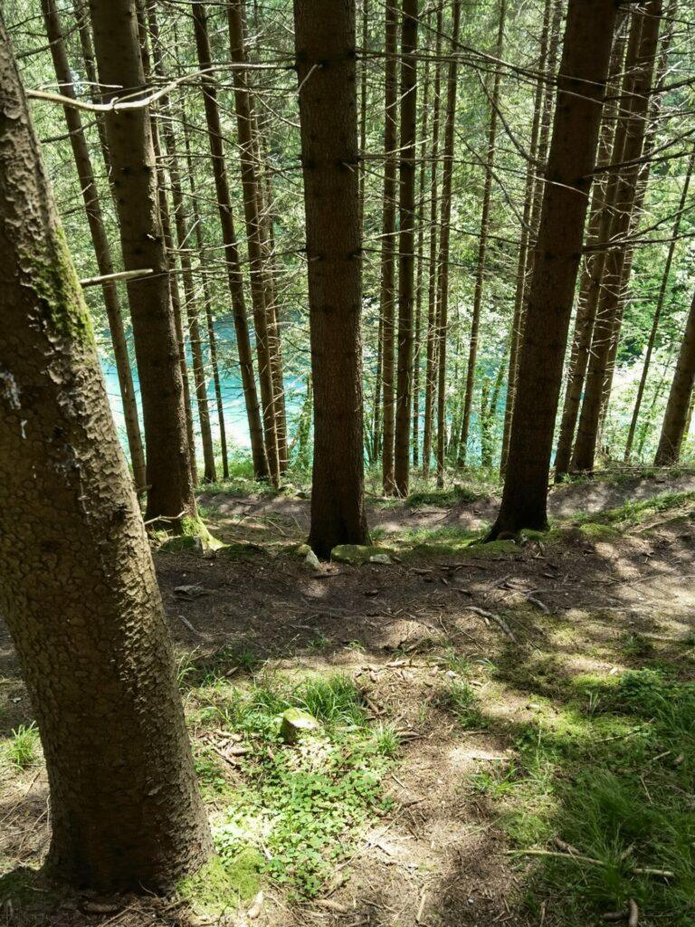 Steiler Weg ins Tiefenthal - Drachenweg bei Roßhaupten