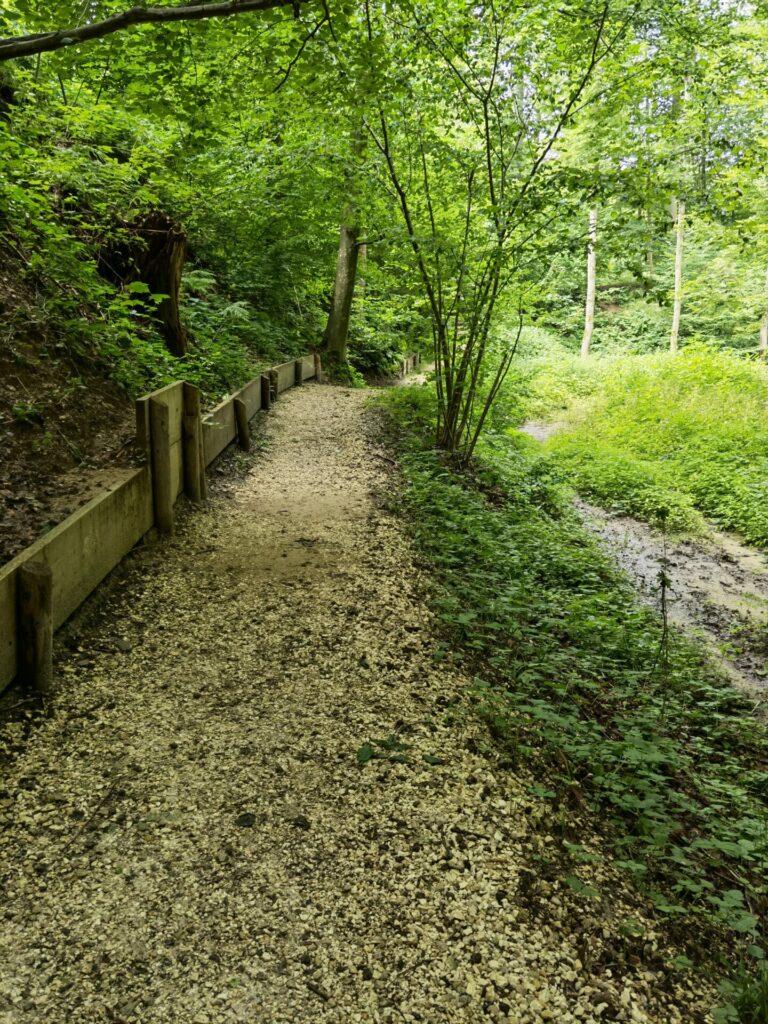Naturerlebnispfad Hansenhohl in Thannhausen