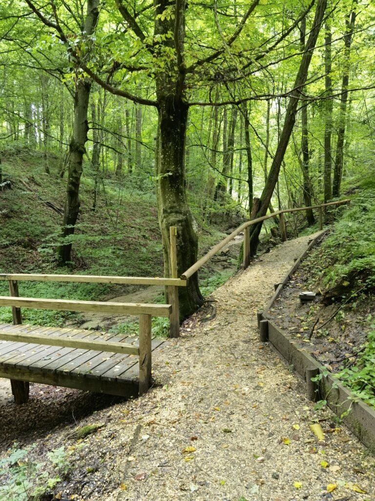 Schmale Wege - Naturerlebnispfad Hansenhohl in Thannhausen