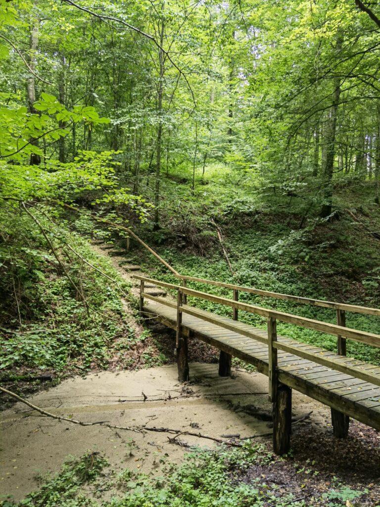 Brücke über enges Tal beim Naturerlebnispfad Hansenhohl in Thannhausen