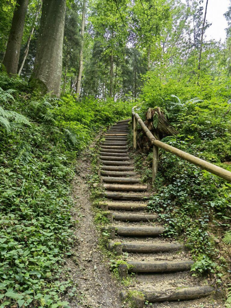Treppen in Thannhausen (Naturerlebnispfad Hansenhohl)