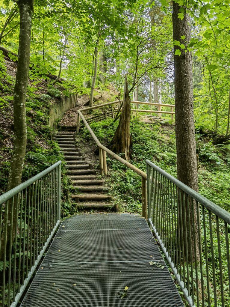 Schale Wege und Brücken in Thannhausen (Naturerlebnispfad Hansenhohl)