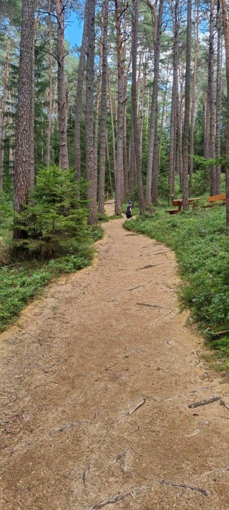 Ab durch den Wald - Spalter Barfußweg